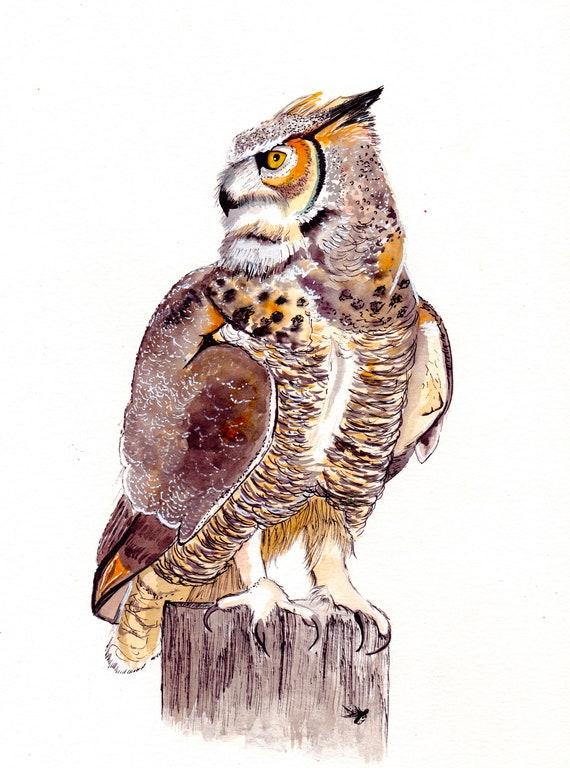Northwoods Brown Owl Vinyl Sticker