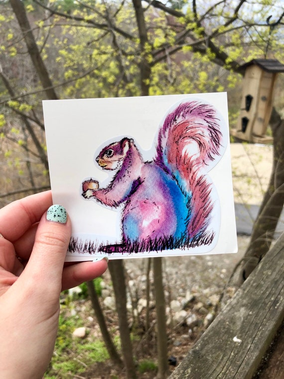 Handsketched Colorful Squirrel Vinyl Sticker