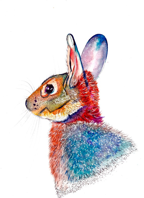 Watercolor and Ink Rainbow Rabbit
