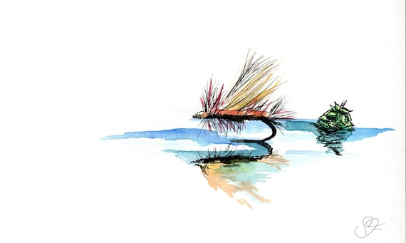 Northwoods Brewing Co's DDH handsketched watercolor flyfishing print