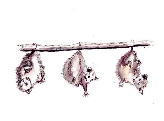 Happy Trio Possums Watercolor Print