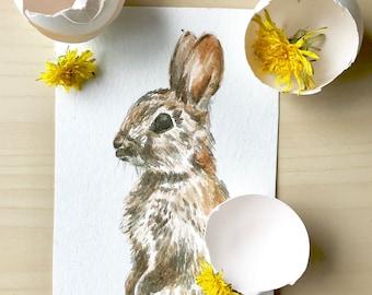 Adorable Bunny Watercolor