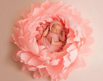 Newborn Baby Photography Props   Giant Paper Peony   Baby Girl Photo Props   Big Paper Flowers   Photoshoot Props   Baby Boy Photo Props