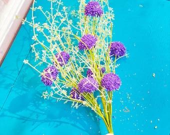 "Purple Allium ""Pom Pom"" Bush"
