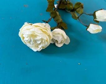 Sea Glass Ranunculus ~ White