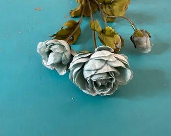 Sea Glass Ranunculus ~ Dusty Blue