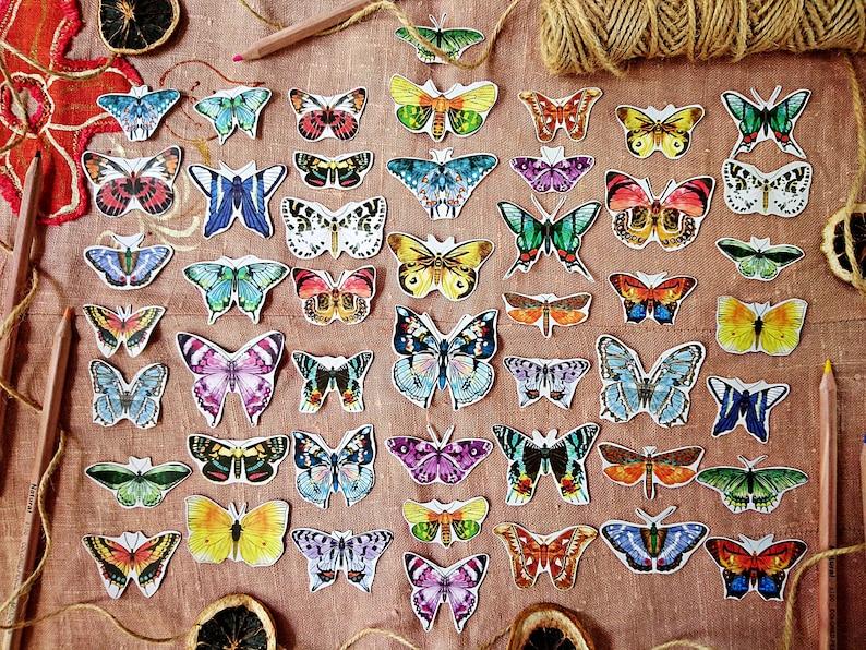 Butterflies Paper Kit 48 pcs Butterflies cut outs Butterfly Paper Ephemera Pack Scrapbooking Kit Entomology Junk Journal Lepidopterology