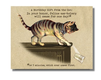 BAD Kitty Birthday Card A Hole Swearing Bad Words Greeting Funny Cat
