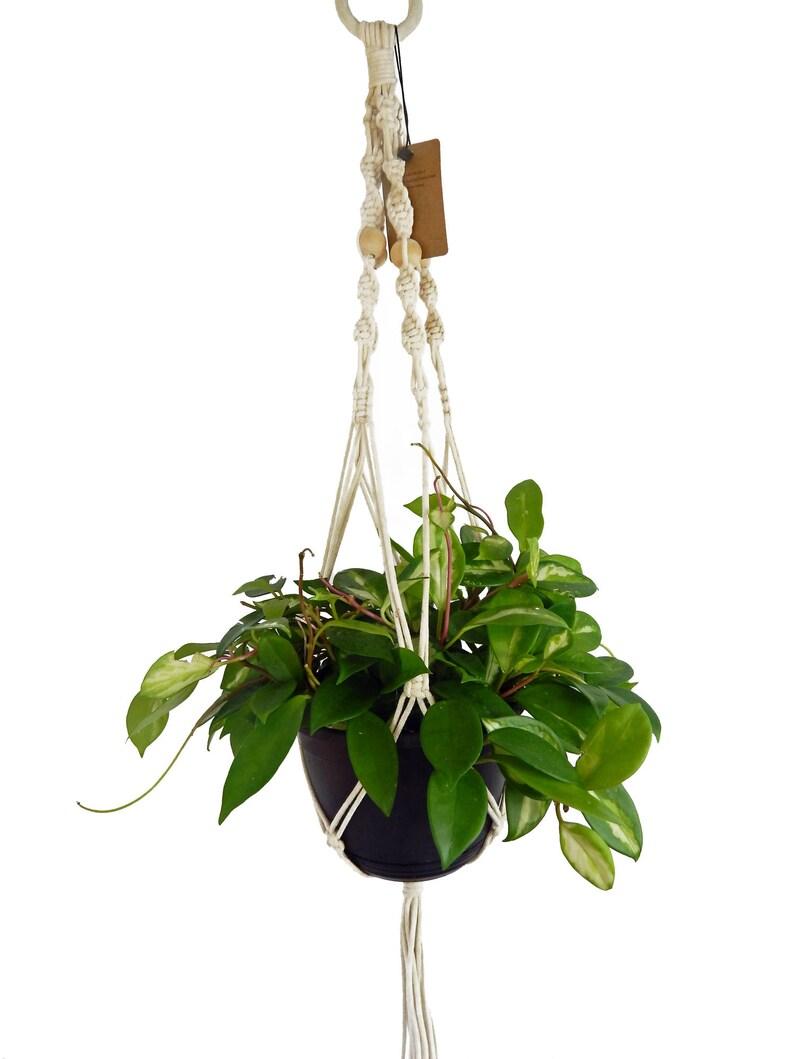Macrame Plant Hanger 35 Inch Long Hanging Planter Flower Etsy