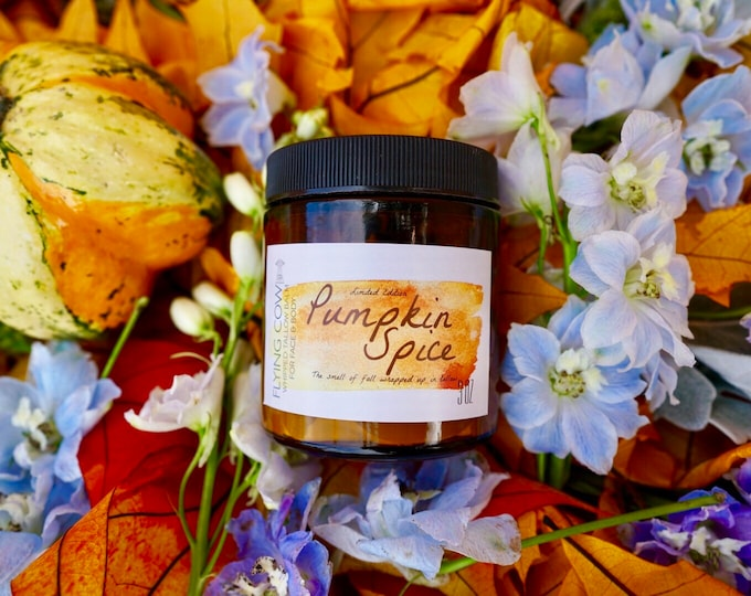 Featured listing image: SALE Limited Edition Whipped Pumpkin Spice Tallow