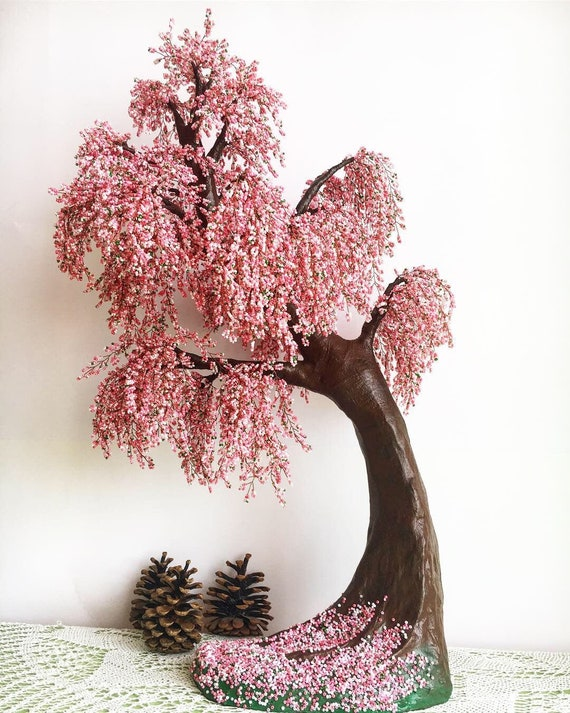 Large Cherry Blossom Bonsai Tree Live Bonsai Tree Tree Of Life Etsy