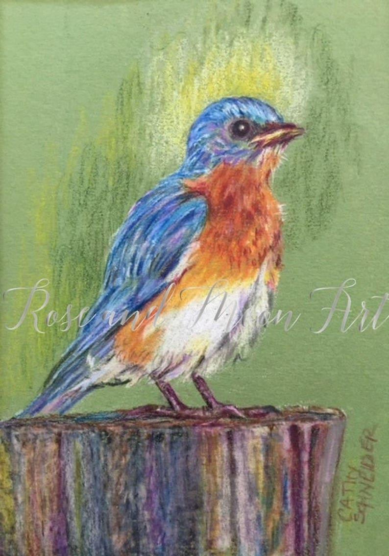 Original Art Original Bluebird Art Bluebird Art Colored Pencil Bluebird Bluebird Of Happiness Happy Bird
