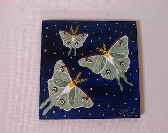 "Miniature Art Hand Painted Refrigerator Magnet 2.5"" x 2.5"" Starry Night Luna Moths"