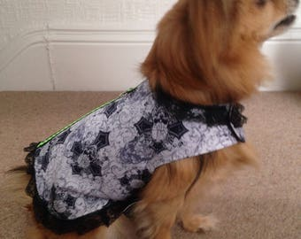 Gothic print small dogs coat.