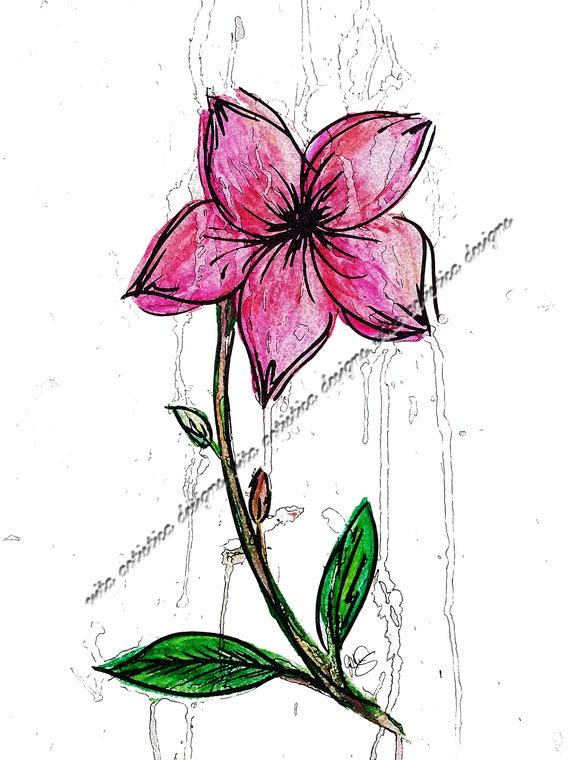 Single Flower Watercolor