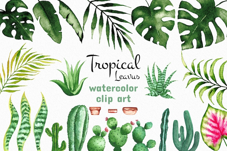 Tropical Clip Art Commercial use Illustration Summer Leaves Tropical Artwork Watercolor Tropical Leaves Watercolor Botanical Elements