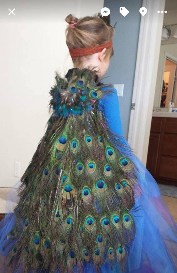 girls peacock costume, blue feathered peacock tutu dress, halloween