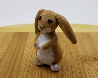 Floppy Ear Honey Bunny