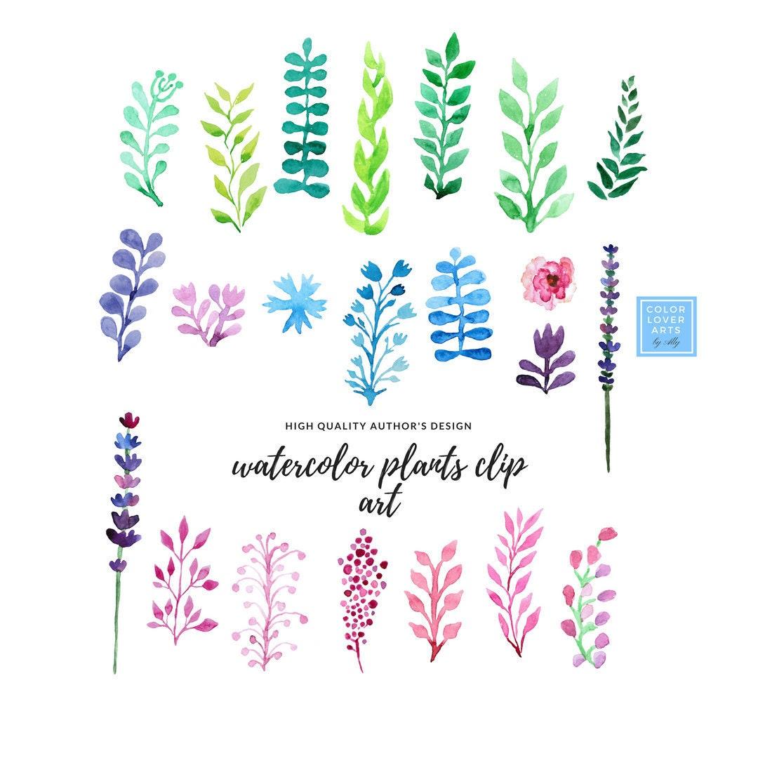 Watercolor Flower Clipart Wedding Floral Clip Art Floral Etsy