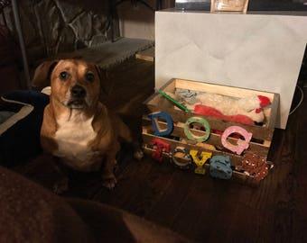 Custome made Pet storage bin