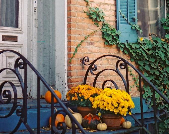 Chestnut Street, Albany NY - Fine Art Photograph