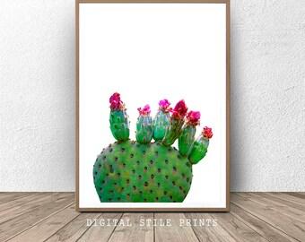Modern Cactus Print, Cactus Wall Art, Cactus photography print, Printable Cacti, Nature Art, Botanical Art, Printable Decor, Home Decor