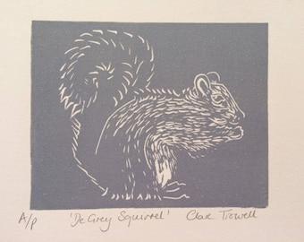 De Grey Squirrel