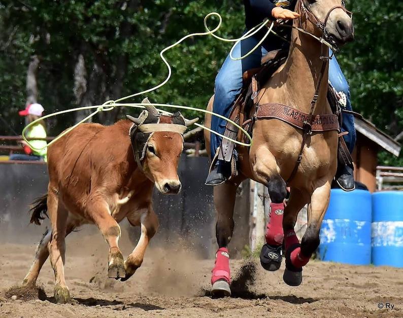 Roping Reins Loop Reins Barrel Racing Reins Variety of Color Reins Flat Adjustable Reins,Paracord Reins Horse Tack