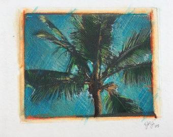 Palm Tree Polaroid Transfer