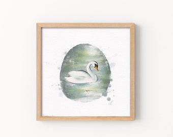 Swan Print - Illustration, Perfect Gift, Square Print, Affordable Artwork