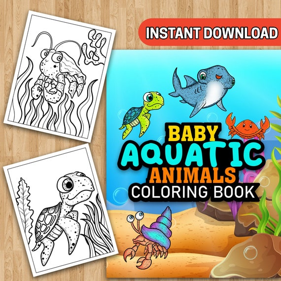 25 Baby Aquatic Animals Coloring Pages  Instant Download