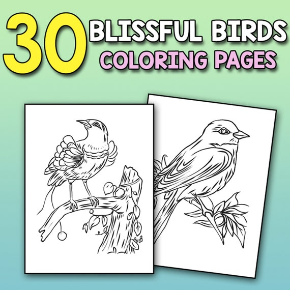 BEST VALUE Blissful Coloring Book for Bird Lovers  Birds 30