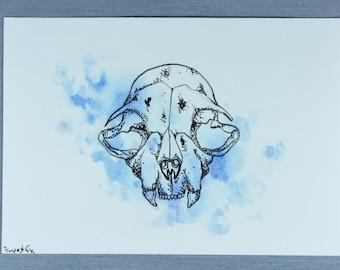 Cat Skull Original Artwork