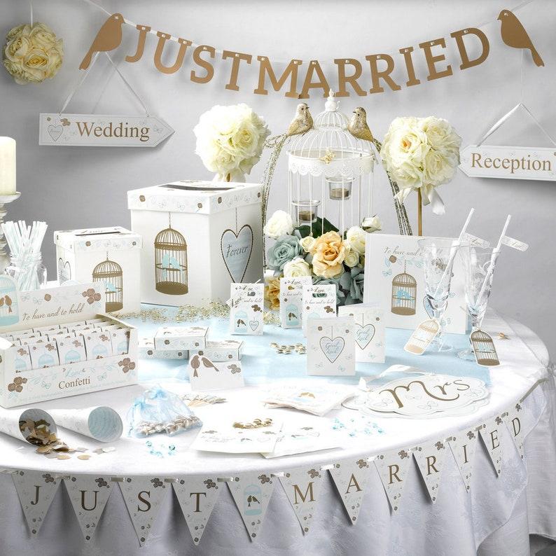 Engaged Gift Bride Wedding Baby Girl Bridal Stripe Straws Paper Straws Birthday Hen Do Wedding Pack 25 Party Pale Blue Straws