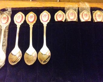 Vintage tea spoons with case