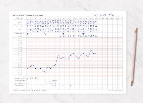 photograph about Bbt Chart Printable named Basal Human body Weather conditions / BBT Chart Printable (A4 Dimension/Celsius) TTC, Cervical Fluid, Fertility Monitoring, Ovulation Tracker