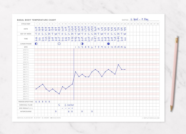 photo relating to Bbt Chart Printable titled Basal Human body Weather conditions / BBT Chart Printable (A4 Sizing/Celsius) TTC, Cervical Fluid, Fertility Monitoring, Ovulation Tracker