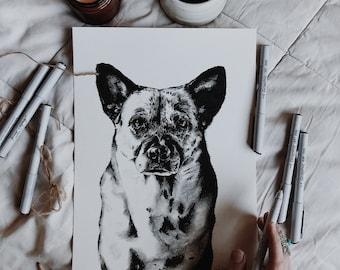 Detailed pet custom portraits