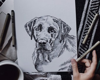 Custom Sketch Style Pet Portrait