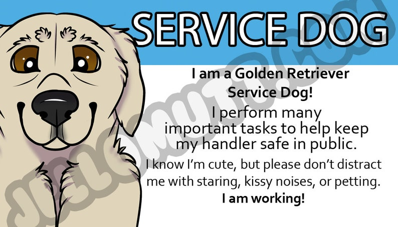 picture about Printable Ada Service Dog Card named Electronic Obtain, Printable Company Canine Legislation Card, ADA Card, Golden Retriever, Information Card