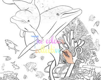 Beautiful dolphin digital stamp colouring page printable download