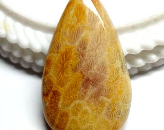 Fossil Coral Pear Designer Cabochon,Size40x23x6 MM,Fossil Coral AAA ,Loose Gemstone,Smooth Cabochons.Natural Gemston.