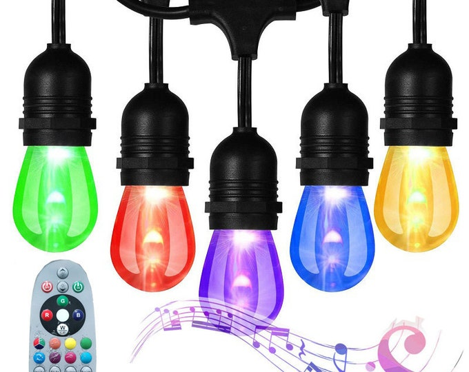 48ft RGB Outdoor LED String Light with Music-Synced Color Changing Bulbs Remote Weatherproof for Patio Backyard Garden Gazebo Porch Lawn