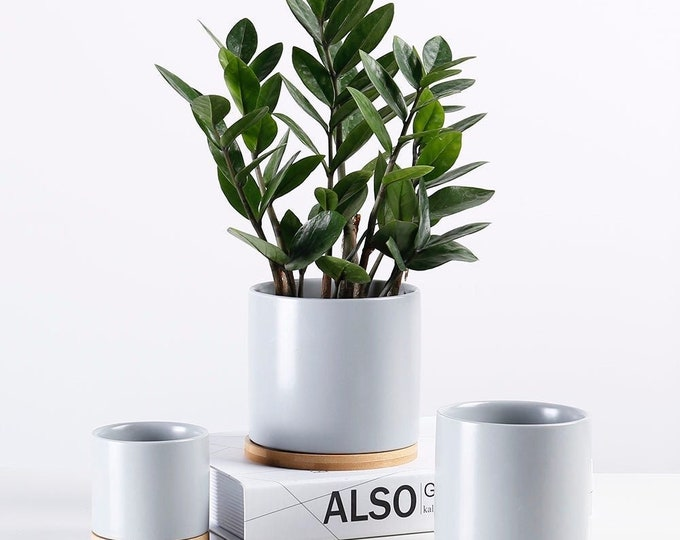 1pc - 4.5 inch Indoor Outdoor Planter Porcelain Flowerpot with Drain Hole and Bamboo Tray