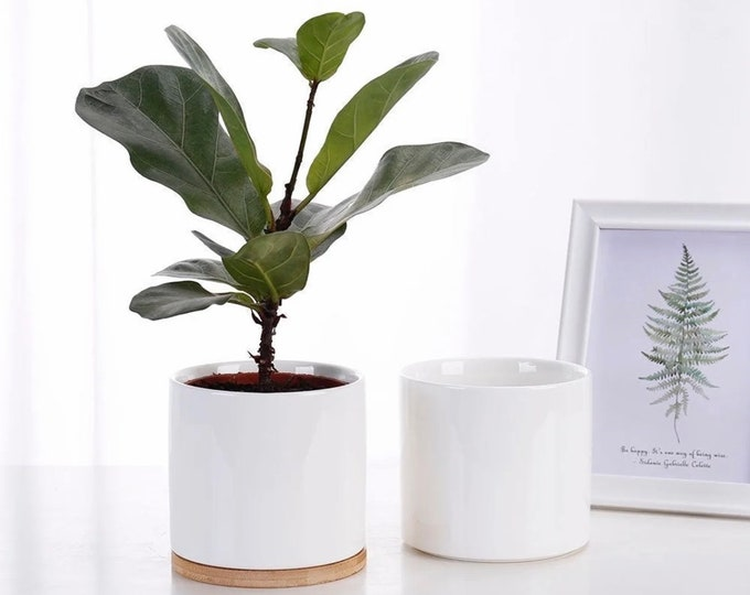 Set of 2 - 4.5 inch Indoor Outdoor Planter Porcelain Flowerpot with Drain Hole and Bamboo Tray