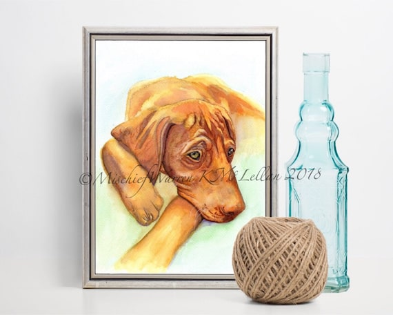Hungarian Viszla Dog Art Card handmade from my watercolour painting thank you or just because. get well Blank for birthday