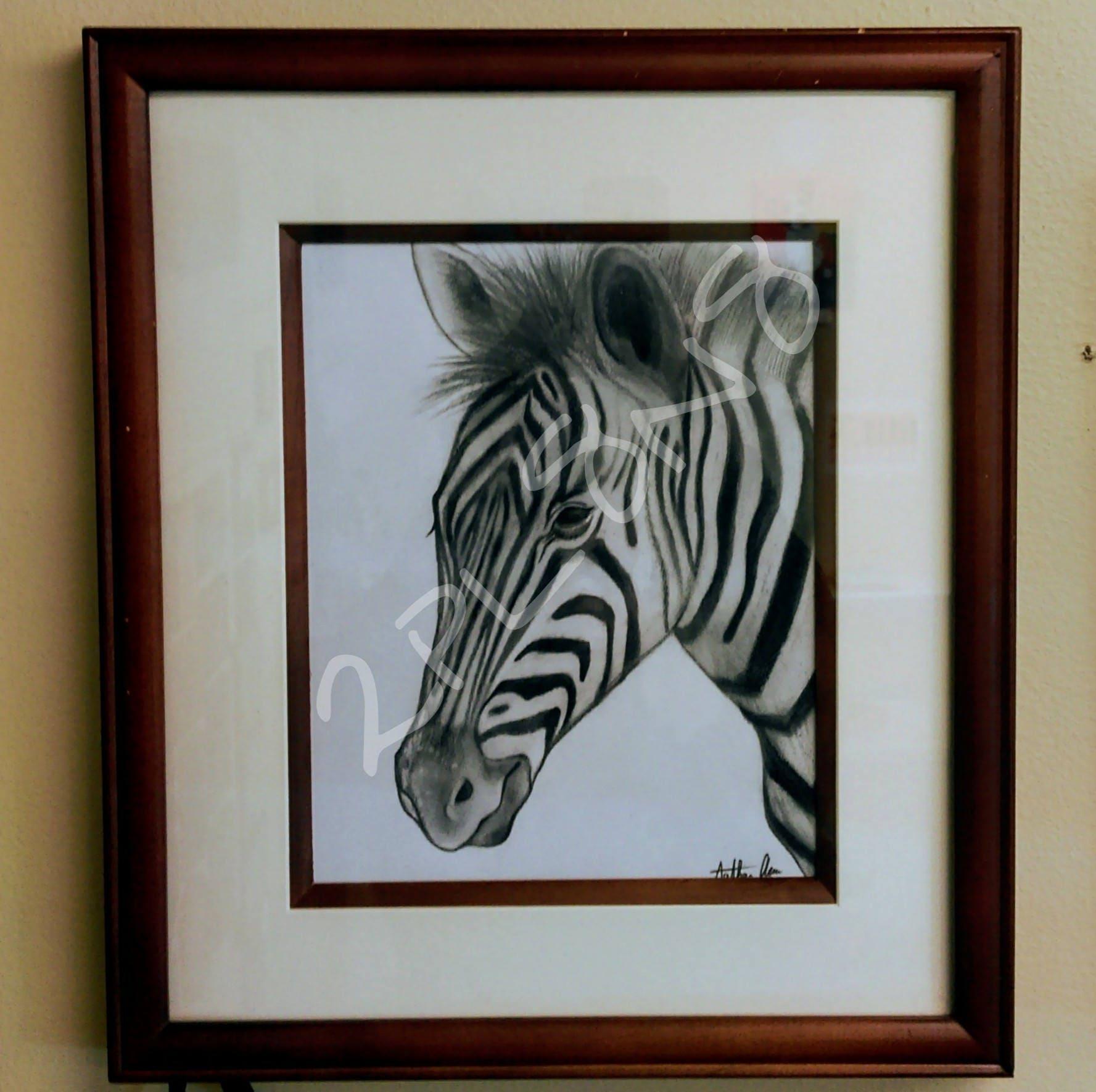 Framed Zebra Drawing by 2PL8N8