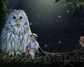 Owl on Branch Digital Background
