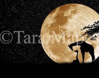 Moon on Starry Night Digital Background