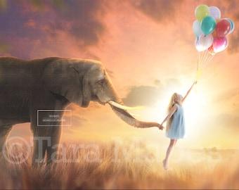Elephant in Sunset Field Digital Background / Backdrop